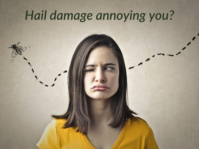 roof damage from hail can be annoying like a fly buzzing around your head